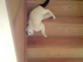 É uma forma original de descer escadas