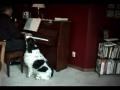Natal ao piano